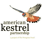 american kestrel partnership